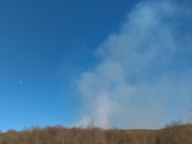 Forest fire in st.clair township