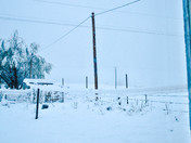 Gallina April Snow Storm