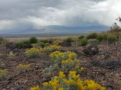 Beauty at the Westside Volcanoes