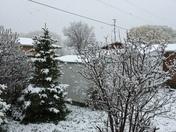 Monday snowfall