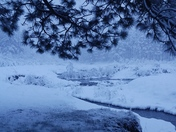 Fenton Lake snowfall