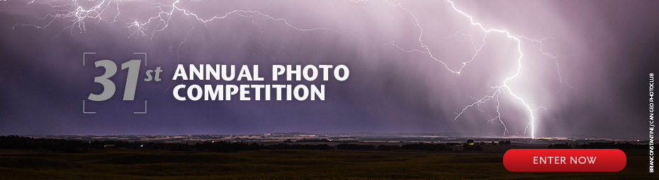 31st Annual Photo Contest