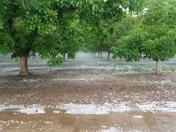 Hail Yuba City