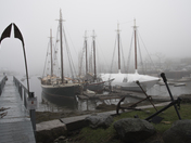 A foggy Mother's Day morning in Camden Harbor