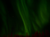 Athabasca Northern Lights