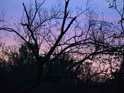 SHORT SUNRISE IN RANDOLPH