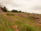 Wichita Mountains Wildlife Refuge