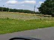 Hay field tornado ?