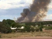 Bosque Fire