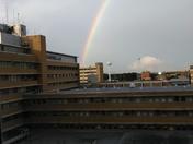 Rainbow over Children's Hospital