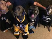 Penguins fan photo