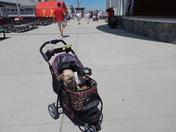 Fun day at Hampton Beach