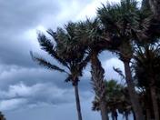 Hutchison Island 06/18/16