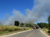 Fire today on the American River bike trail