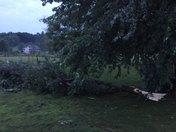 Storm Damage Kearney