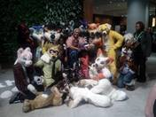 Our Furry Experience
