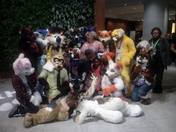 June Haughton King and Family Furry Fun experience.