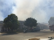 Aptos field fire
