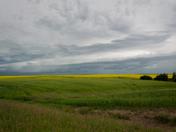 Stormy Alberta Summer