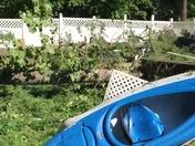 Microburst backyard disaster