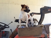 Tractor co-pilot