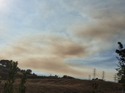 Putah creek fire 2016