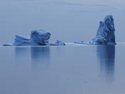 Twillingate Iceberg Alley