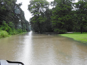 Brown Road in Ponchatoula
