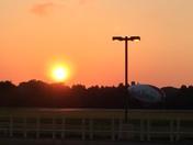 Met Life sunrise