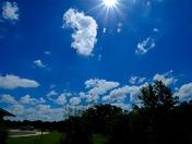 Pretty Blue Skies