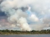 Prescribed Burn Fox Lake Sanctuary