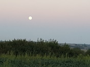 The moon from our hill in Glenwood Iowa