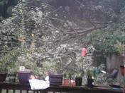 Storm near new ken/plum