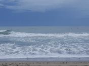 Watching the safer in jensen beach