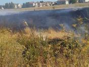 Elk Grove Fire Upclose
