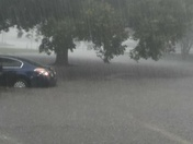 Flooding at forest isle