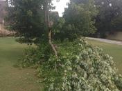 Oklahoma wind!