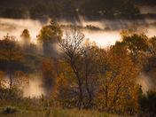 Rays Through The Autumn Valley