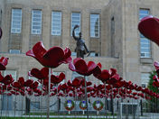 Cenotaph and Poppies