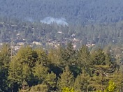 Fire at Henry Cowell State Park
