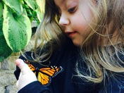 Butterfly Lands On Daughter