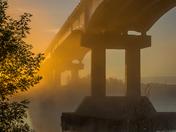 Autumn Mist 0290
