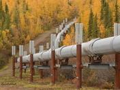The trans-Alaska Pipeline