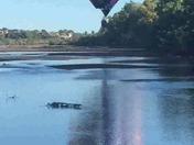 Balloon lands on the Rio Grande
