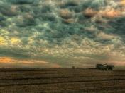 Iowa Harvest