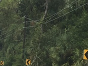 Hurricane Matthew Power lines