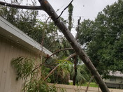 Power line saved our roof