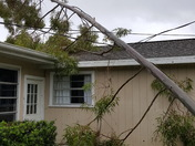 Power Line Saved Roof
