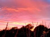 Rainbow and Sunset