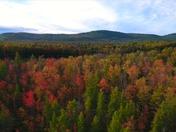 Aerial Video of Burns Pond